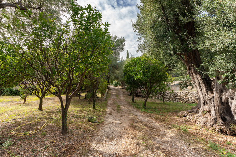 French property for sale in Cap-d'Ail, Alpes Maritimes - €1,908,000 - photo 11