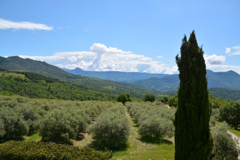 French property for sale in Champtercier, Alpes-de-Hautes-Provence - €3,685,000 - photo 10