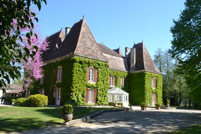 chateauin Villeréal