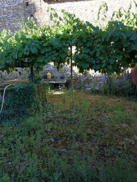 French property for sale in Payroux, Vienne - €19,000 - photo 2