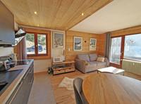 French ski chalets, properties in LA CLUSAZ, La Clusaz, Massif des Aravis