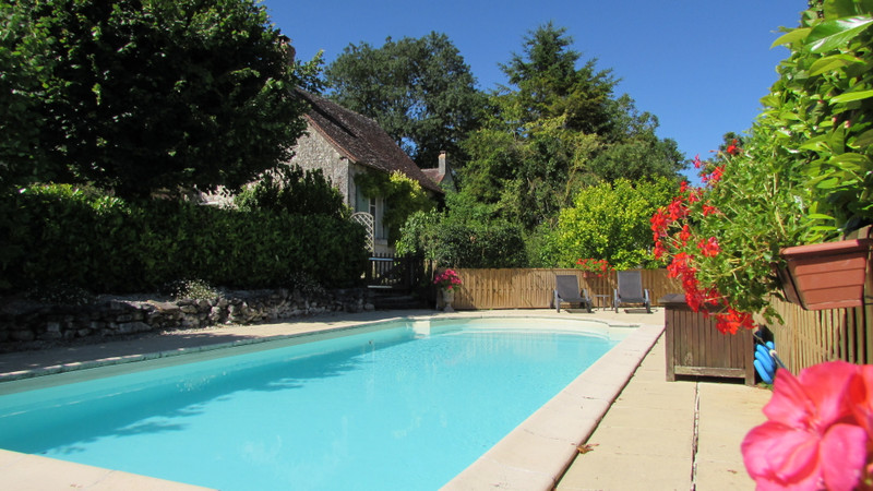 French property for sale in Le Grand-Pressigny, Indre-et-Loire - €595,000 - photo 3
