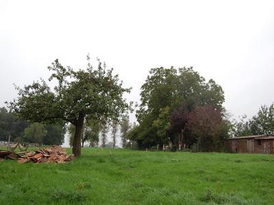 French property for sale in Hesdin, Pas de Calais - €38,700 - photo 4