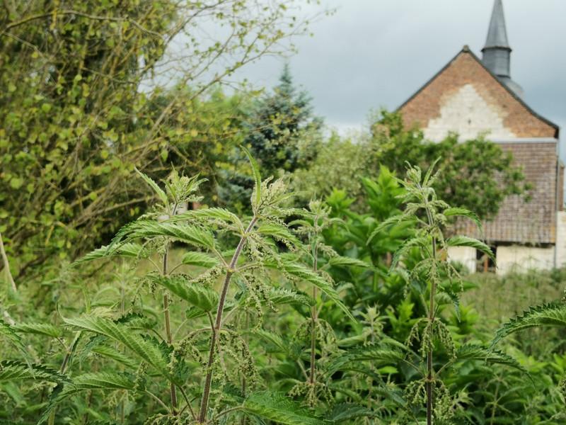 French property for sale in Raye-sur-Authie, Pas-de-Calais - €51,600 - photo 3