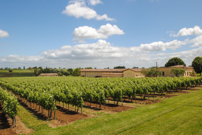 Vineyard of 28 hectares under Bordeaux AOC - Good terroir - Very well maintained - 2 charming stone houses - Superb opportunity