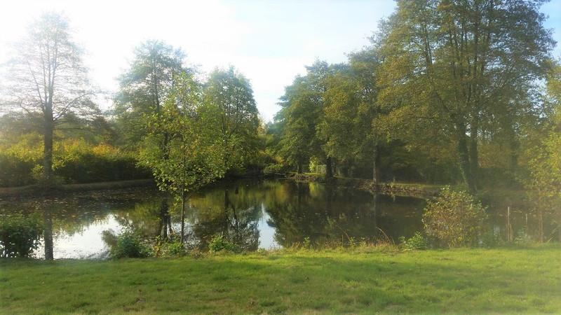 French property for sale in Pré-en-Pail-Saint-Samson, Mayenne - €41,600 - photo 4