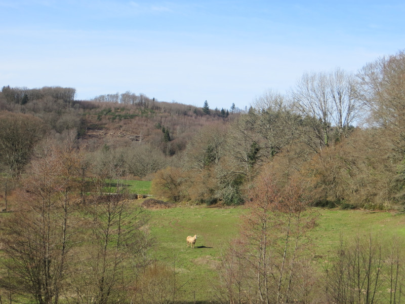 French property for sale in Saint-Moreil, Creuse - €328,600 - photo 3