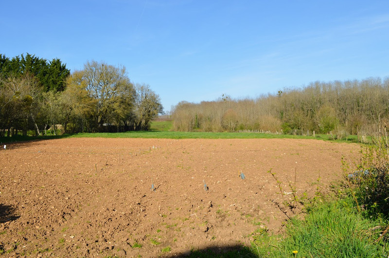 French property for sale in Lussac, Charente - €68,160 - photo 9