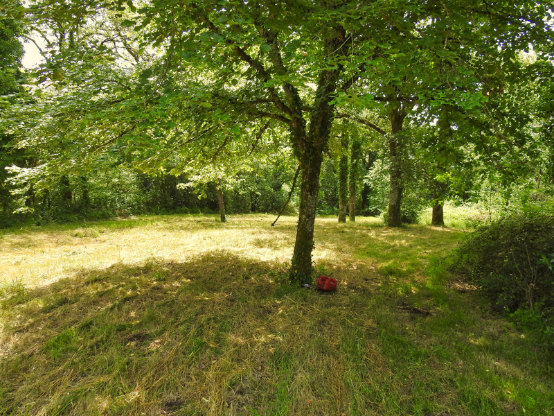 French property for sale in Châteauponsac, Haute-Vienne - €46,500 - photo 6