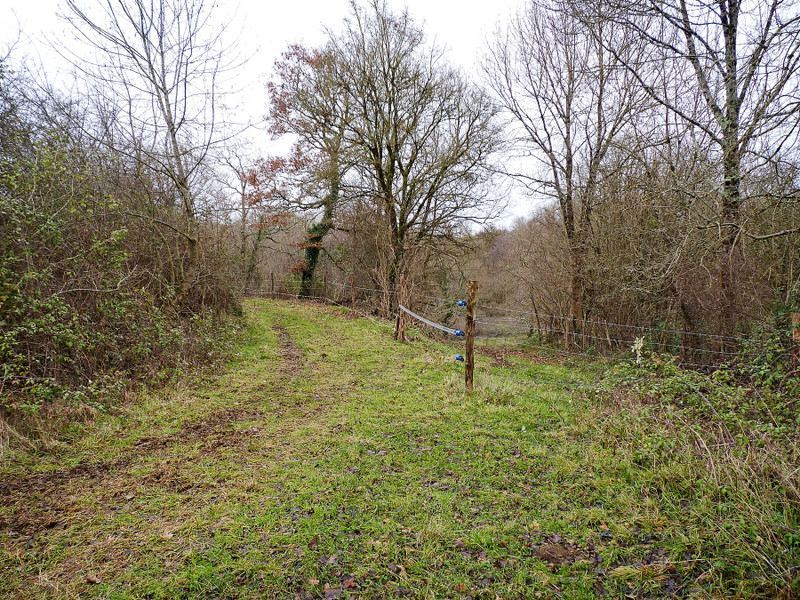French property for sale in Nieuil, Charente - €46,000 - photo 5