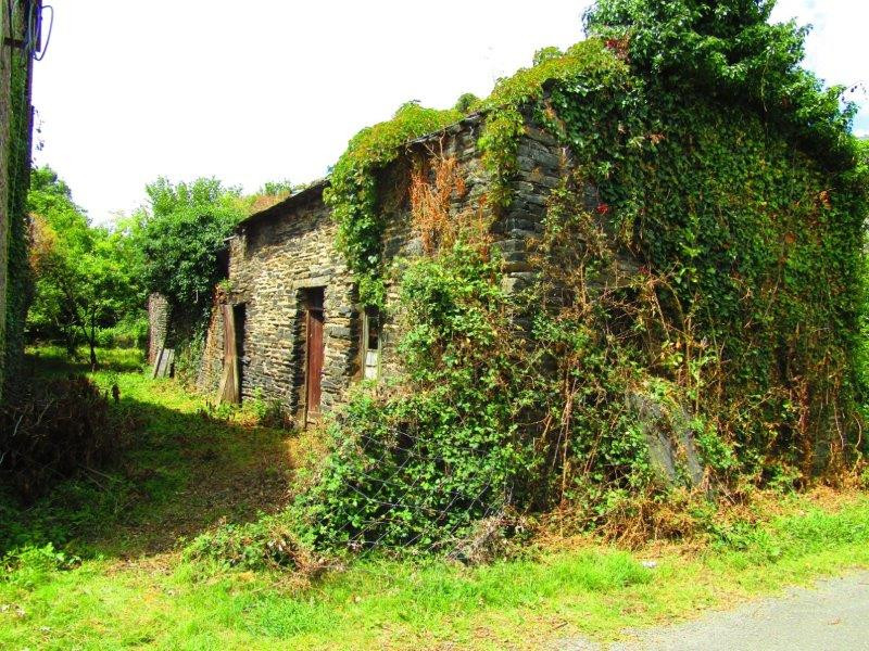 French property for sale in Javron-les-Chapelles, Mayenne - €25,600 - photo 7