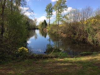 French property for sale in Ménéac, Morbihan - €141,700 - photo 10