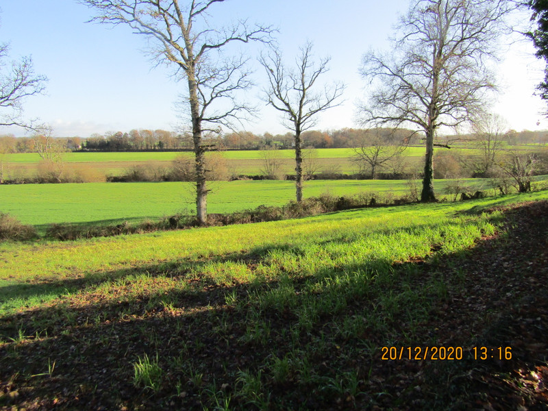 French property for sale in Madré, Mayenne - €31,600 - photo 2