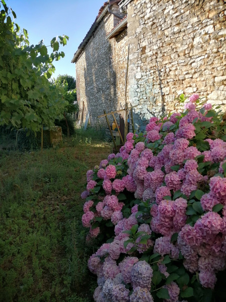 French property for sale in Payroux, Vienne - €19,000 - photo 10