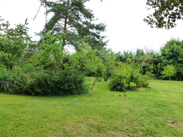 French property for sale in Pliboux, Deux Sevres - €162,000 - photo 4