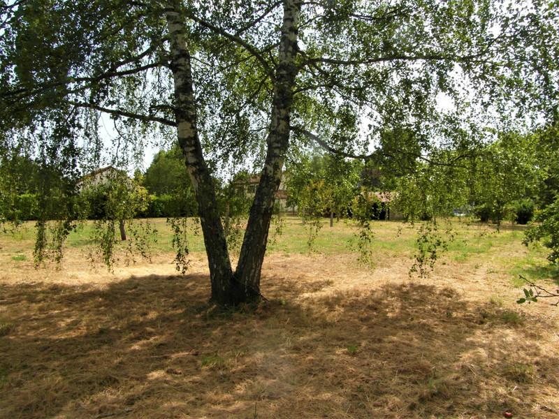 French property for sale in Mézières-sur-Issoire, Haute Vienne - €14,000 - photo 6
