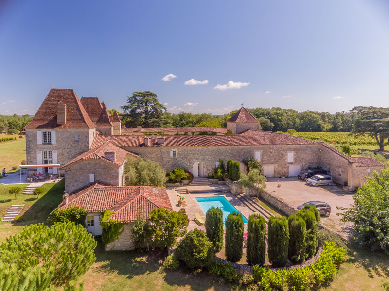 French property for sale in Nérac, Lot et Garonne - €2,950,000 - photo 2