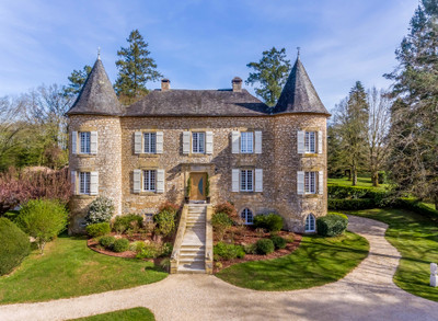 Prestige château from the 15th century with a unique style and design with gites and B&B, swimming pool in the heart of Black Périgord.