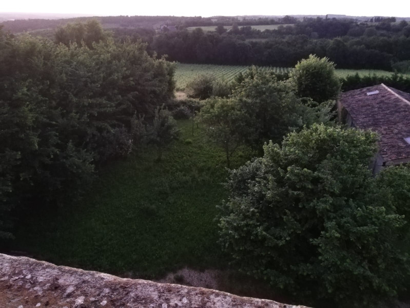French property for sale in Saussignac, Dordogne - €630,000 - photo 6