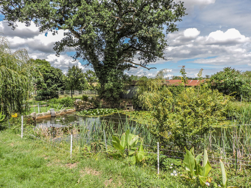 French property for sale in Pressac, Vienne - €219,350 - photo 10