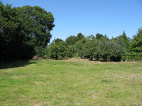 French property, houses and homes for sale inLanouéeMorbihan Brittany