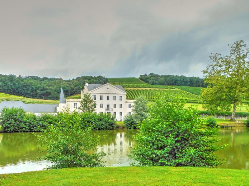 French property for sale in Jurançon, Pyrénées-Atlantiques - €1,100,000 - photo 10