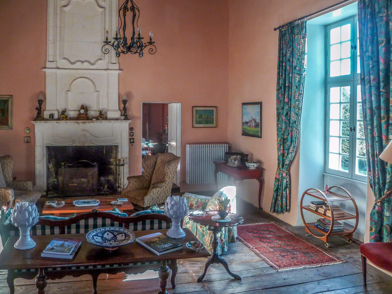 French property for sale in Verteillac, Dordogne - €975,000 - photo 6