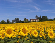 French property, houses and homes for sale inMontignac-ToupinerieLot_et_Garonne Aquitaine
