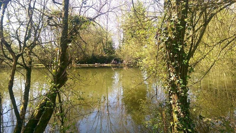 French property for sale in Saint-Cyr-le-Gravelais, Mayenne - €371,000 - photo 4
