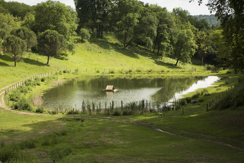 French property for sale in La Bachellerie, Dordogne - €2,782,500 - photo 8
