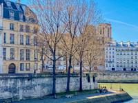 Paris 4 Exclusif, à la pointe de l Ile Saint Louis, Deux Pièces, 44m2, Vues sur Seine et Tours de Notre Dame.