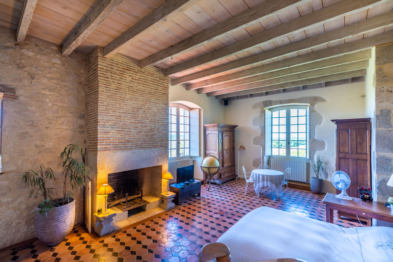 French property for sale in Nérac, Lot et Garonne - €2,950,000 - photo 10