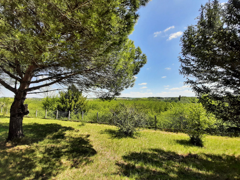 French property for sale in Saint-Séverin, Charente - €171,200 - photo 2