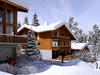 French real estate, houses and homes for sale in COMBLOUX, Combloux, Domaine Evasion Mont Blanc