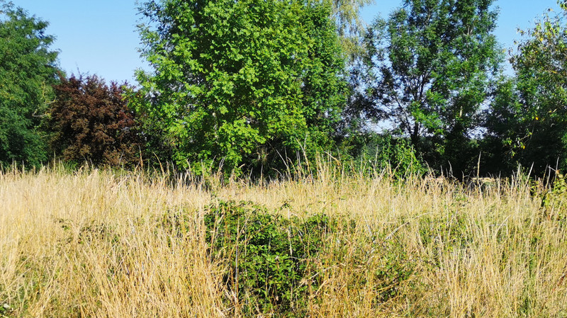French property for sale in Voulême, Vienne - €14,900 - photo 6