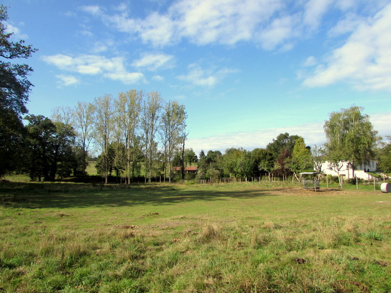 French property for sale in Fromental, Haute Vienne - €34,600 - photo 6