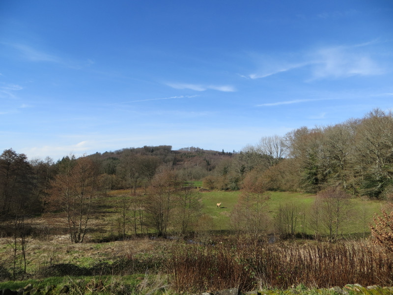 French property for sale in Saint-Moreil, Creuse - €328,600 - photo 2