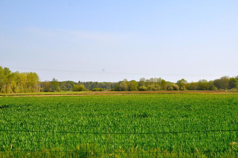 French property for sale in Saint-Philbert-du-Peuple, Maine-et-Loire - €132,000 - photo 10