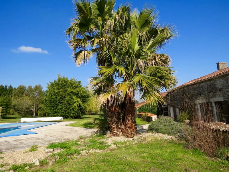 French property for sale in Saint-Savinien, Charente-Maritime - €551,200 - photo 2
