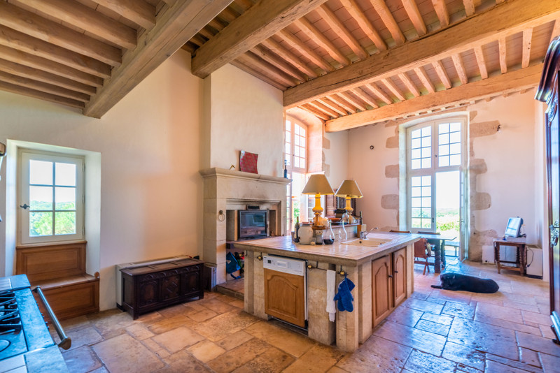 French property for sale in Nérac, Lot et Garonne - €2,950,000 - photo 7