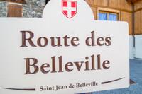 French ski chalets, properties in Saint-Jean-de-Belleville, Saint Martin de Belleville, Three Valleys