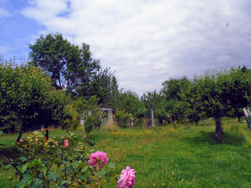 French property for sale in Availles-Limouzine, Vienne - €110,000 - photo 3