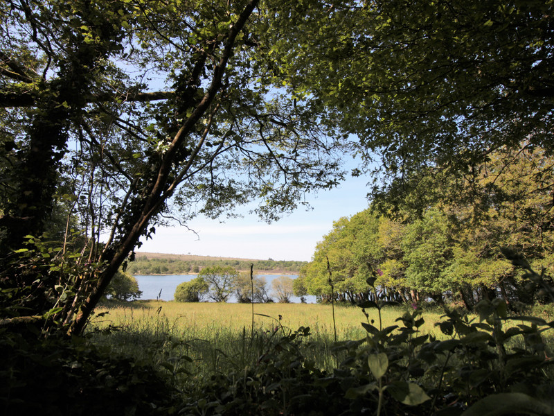 French property for sale in Loqueffret, Finistère - €66,600 - photo 9