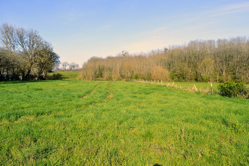 French property for sale in Lussac, Charente - €68,160 - photo 2