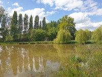 French property, houses and homes for sale in Grez-en-Bouère Mayenne Pays_de_la_Loire