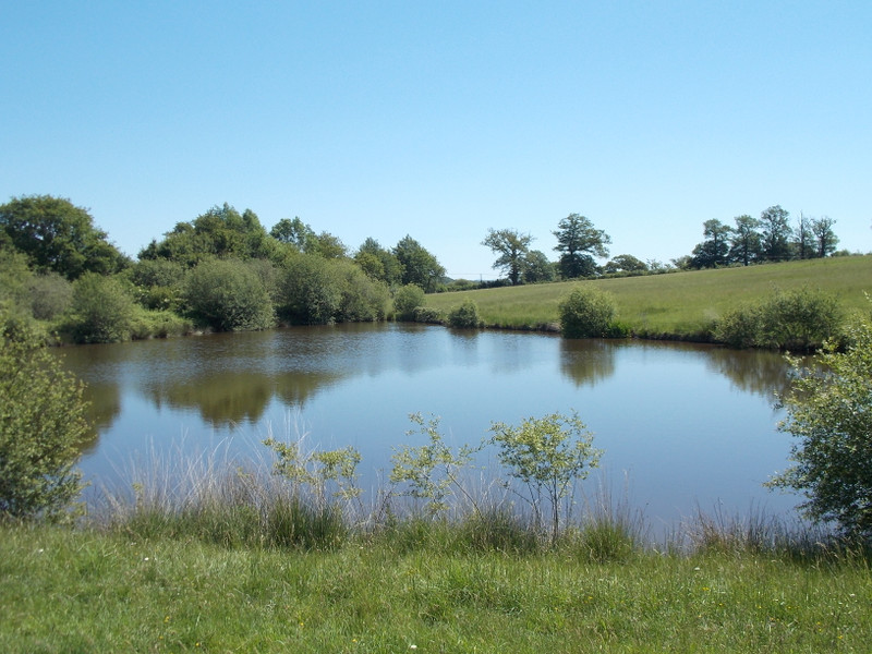 French property for sale in Oradour-Saint-Genest, Haute Vienne - €499,260 - photo 4