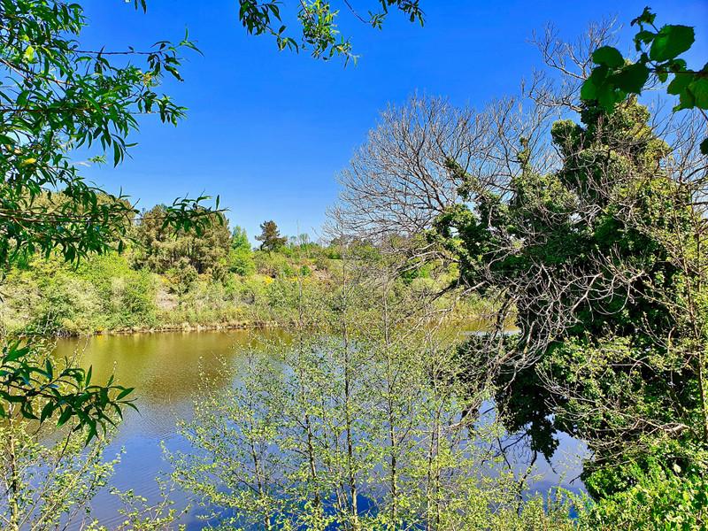 French property for sale in La Roche-Bernard, Morbihan - €250,000 - photo 4