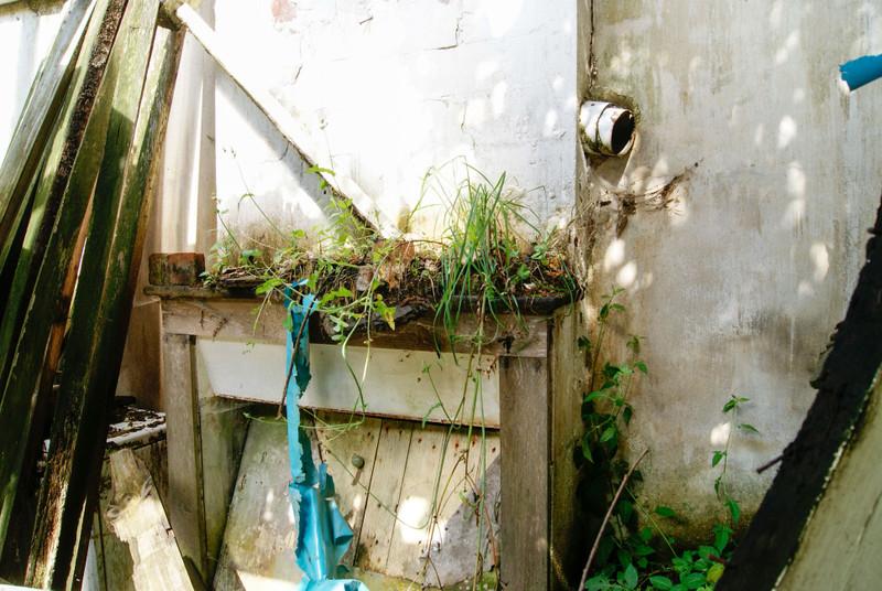 French property for sale in Saint-Paul-en-Gâtine, Deux-Sèvres - €18,100 - photo 4