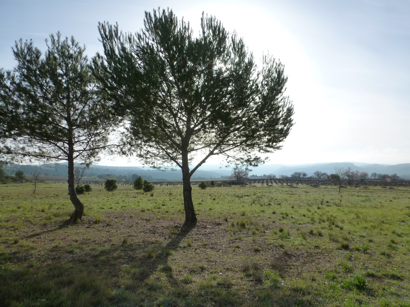 French property for sale in Agel, Herault - €69,600 - photo 9
