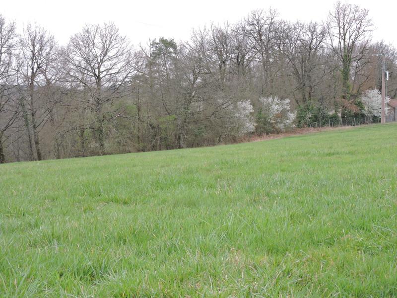 French property for sale in Rouffignac-Saint-Cernin-de-Reilhac, Dordogne - €56,600 - photo 9